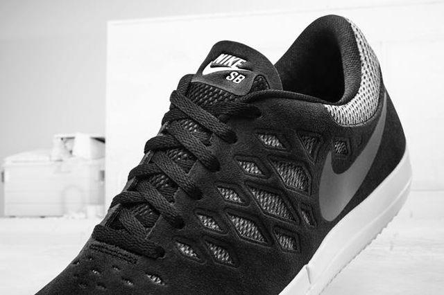 Nike Sb Free Shoe 3