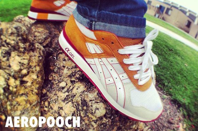 Wdywt Aeropooch 1