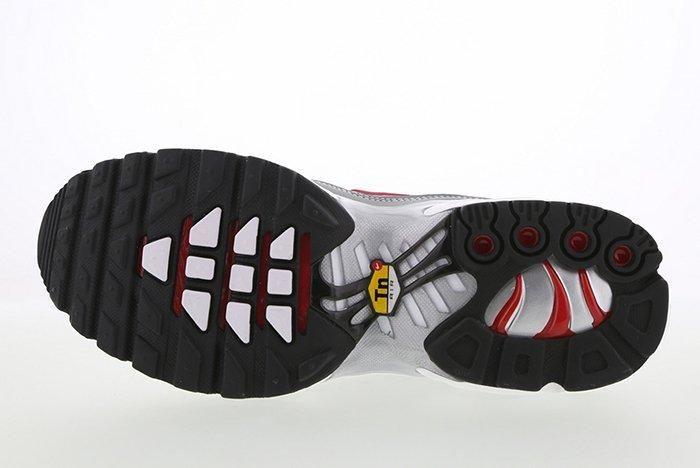 Nike Air Max Plus Silver Bullet3