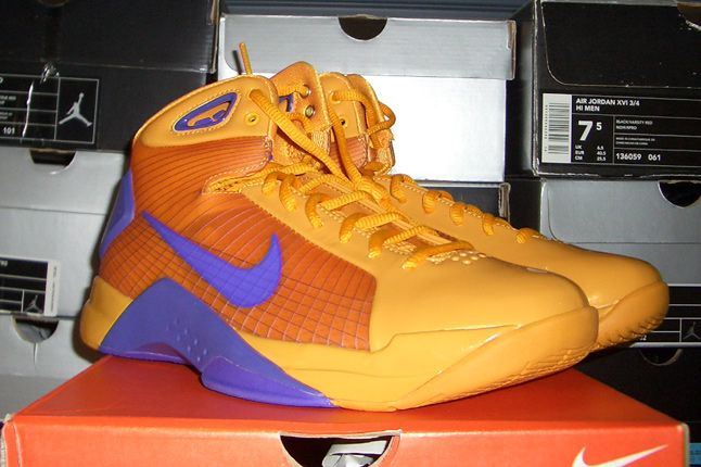 Rebecca Dahms Wmns Basketball Collection Nike Air Hyperdunk Snake Pool 1