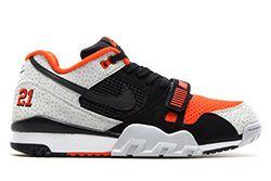 Nike Air Trainer 2 Prm Qs Safari Thumb