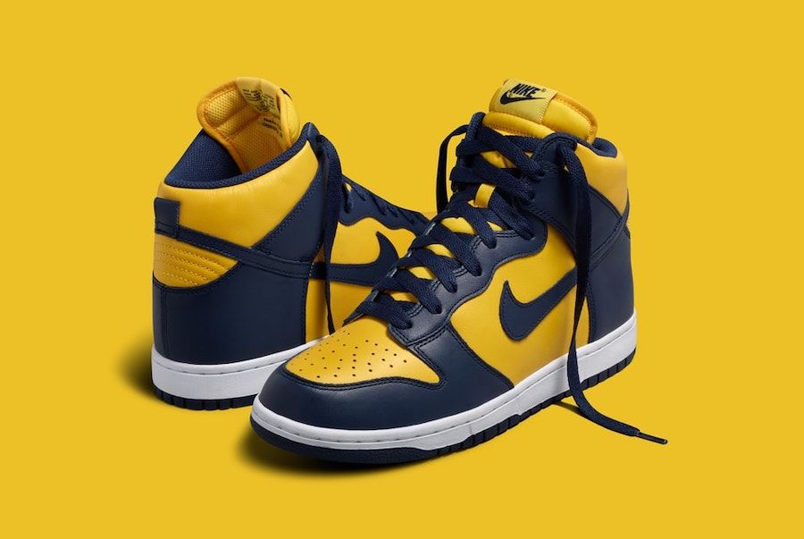 nike dunk Michigan