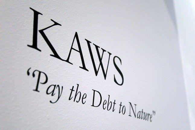 Kaws Pay The Debt To Nature Exhibition Recap 1 1