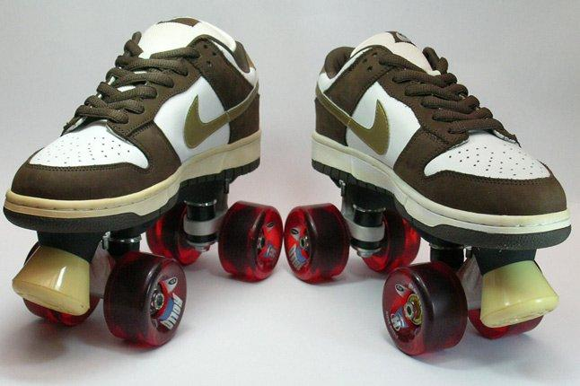 Nike Dunk Sample Roller Dunk 2 1