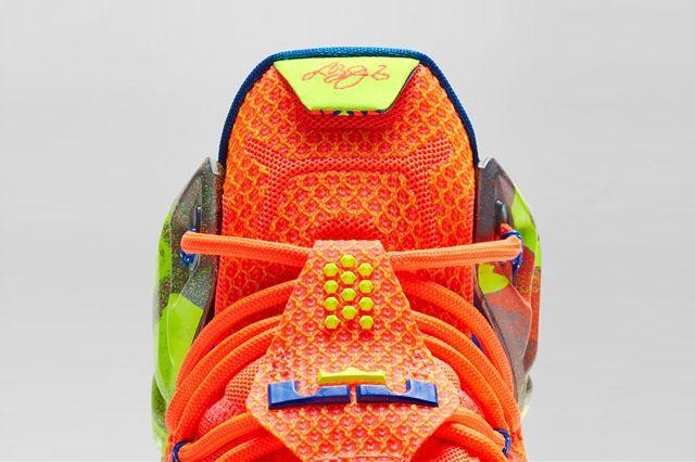 Nike Lebron 12 Six Meridians Bump 8
