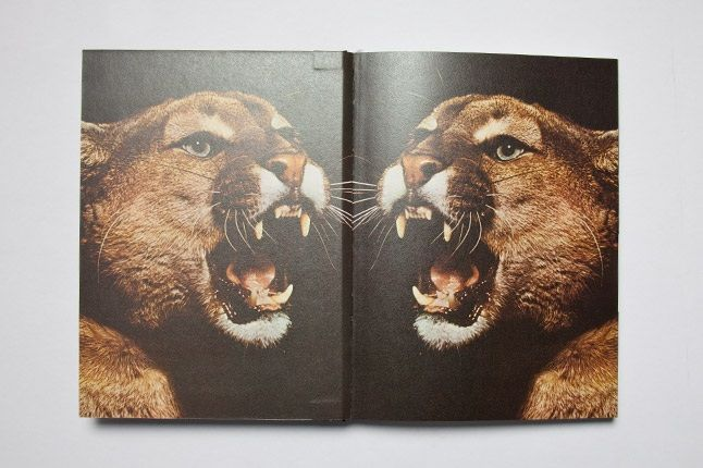 Puma Running Book Inside 1