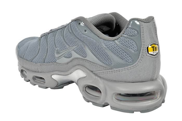 Nike Air Max Plus Hammer4
