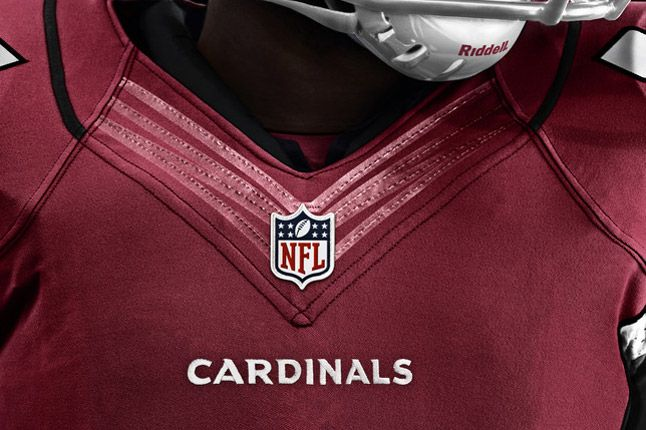 Arizona Cardinals Detail 1