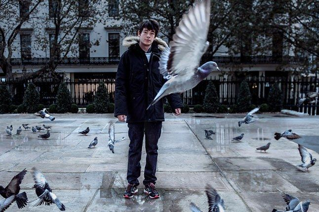 Staple Size Pigeon 1