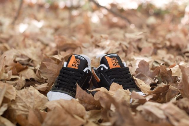 Hal X Cl Autumn Leaves 2