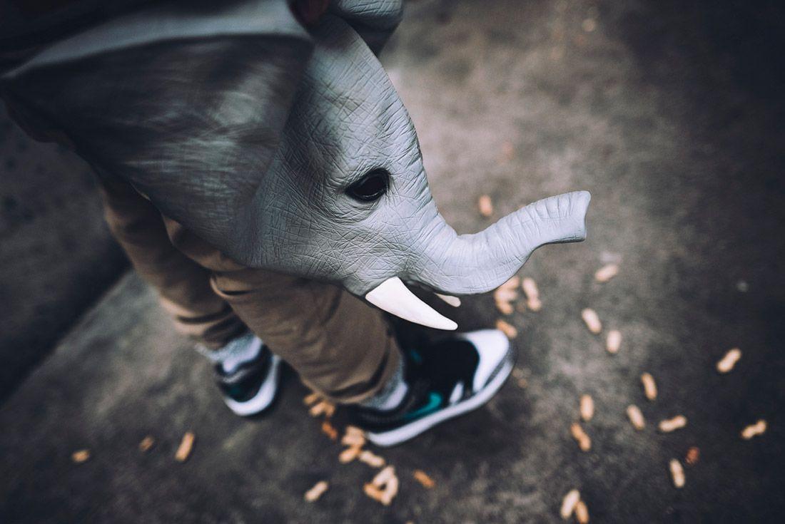 Nike Air Max 1 Atmos Elephant 2017 Retro Air Max Day 6