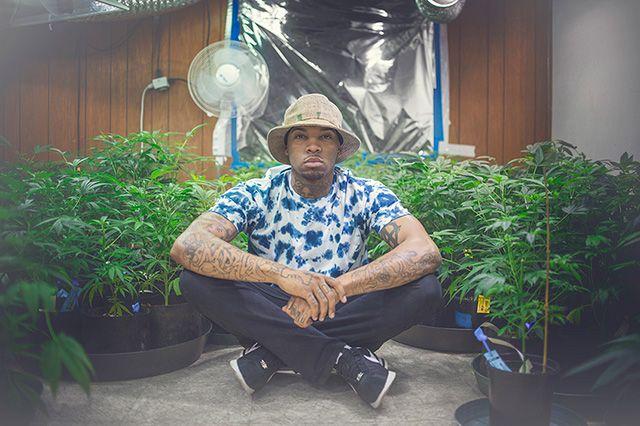Akomplice Marijuana For The Future Collection 2