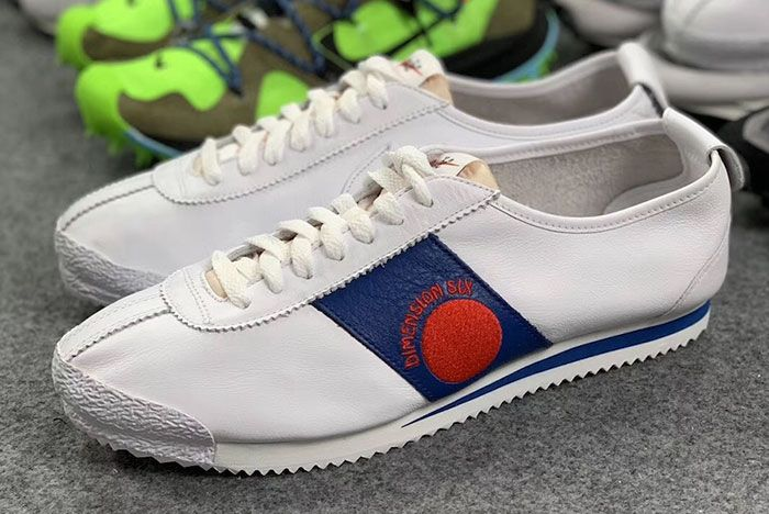 Shoe Dog Nike Cortez Pack Dimension Six