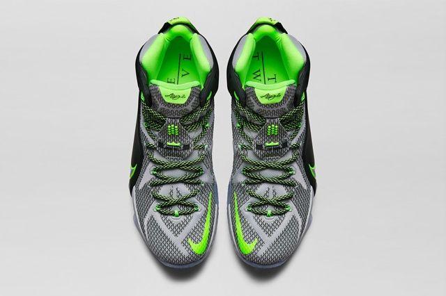 Nike Lebron 12 Dunk Force 9