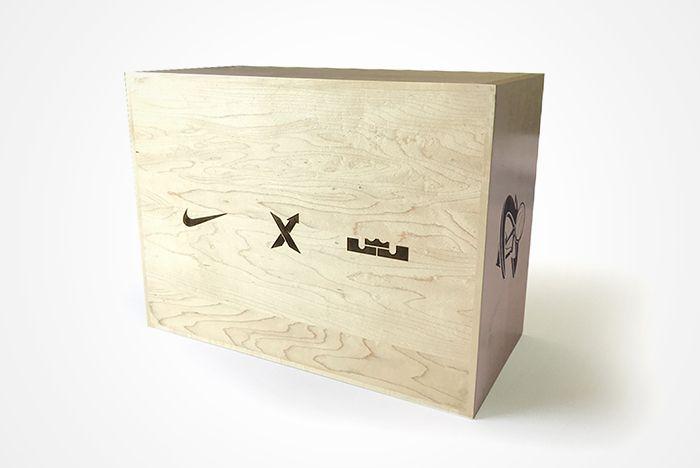 Nike Lebron Zoom Generation 5