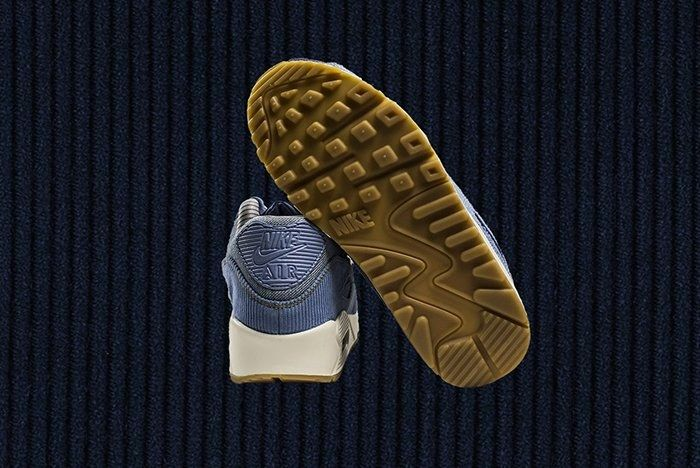 Air Max 90 Wmns December Sky 3