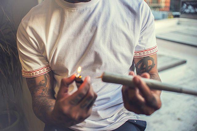 Akomplice Marijuana For The Future Collection 1