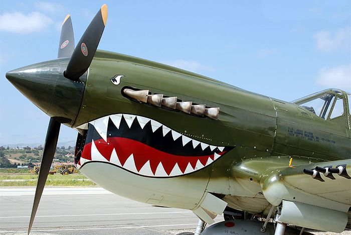 Tinker Hatfield Ww11 Plane