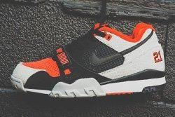 Nike Air Trainer 2 Safari Bump Thumb