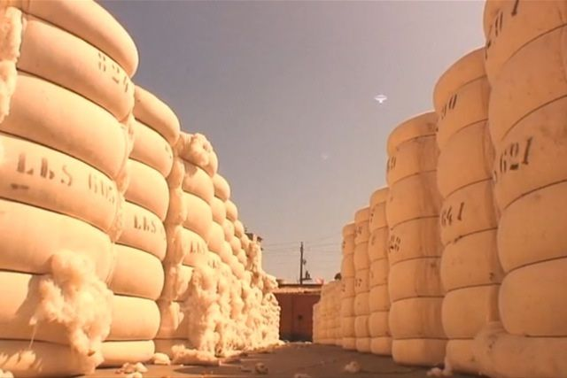 Piola Kickstarter Cotton 1