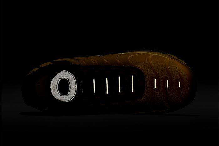 Drake X Nike Air Max Plus 4