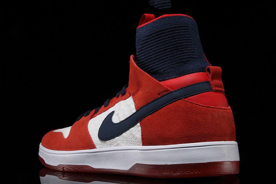 Nike Sb Zoom Dunk High 5