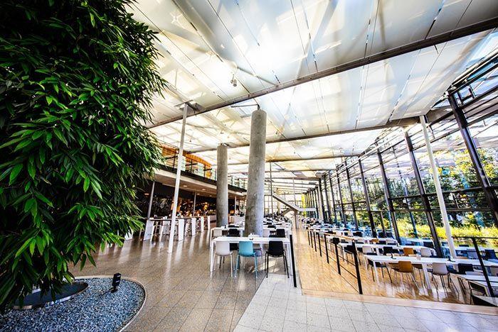 Adidas Hq Arena Food Hall