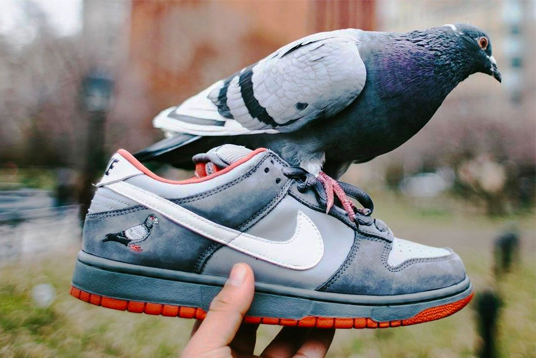 Jeff Staple Nike Dunk Sb Pigeon Right