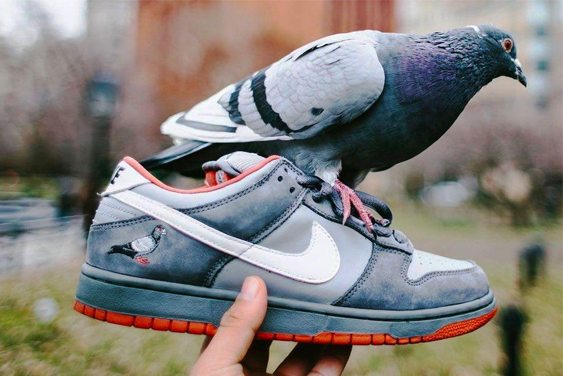 Jeff Staple Nike Dunk Sb Pigeon Right