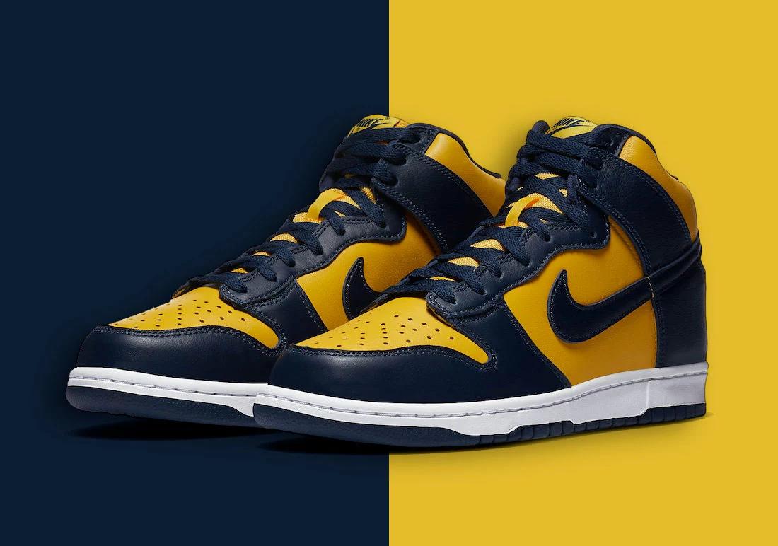 Nike Dunk Michigan 2020