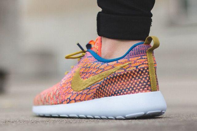 Nike Roshe One Multicolour 2