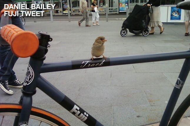 Daniel Bailey 1