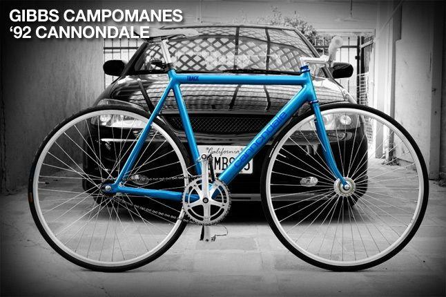 Gibbs Campomanes 11