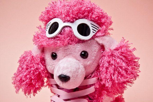 Adidas Originals Js Poodles Face 1