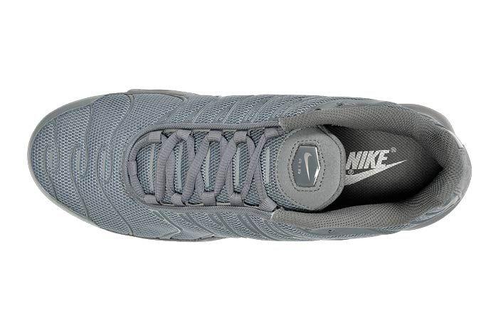 Nike Air Max Plus Hammer5
