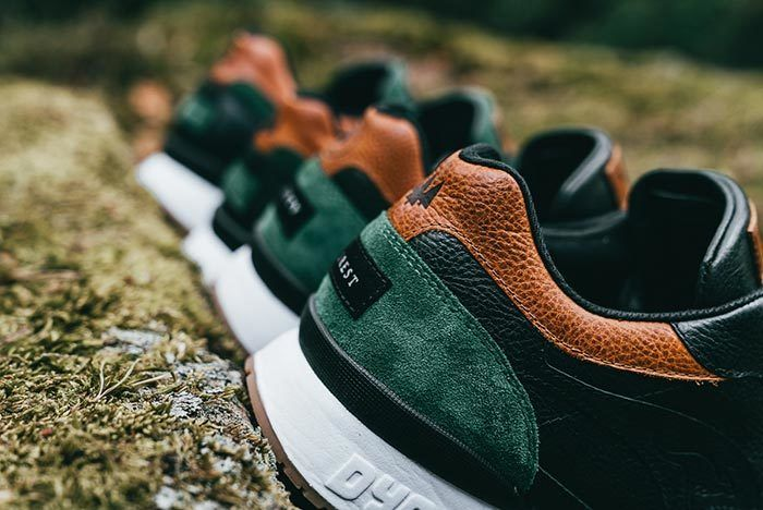 Kangaroos Coil R1 Mighty Forest 10