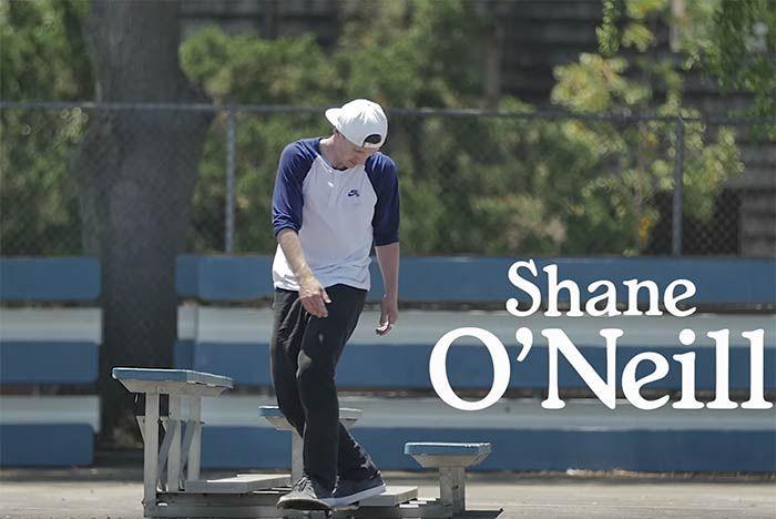 Sb Shane