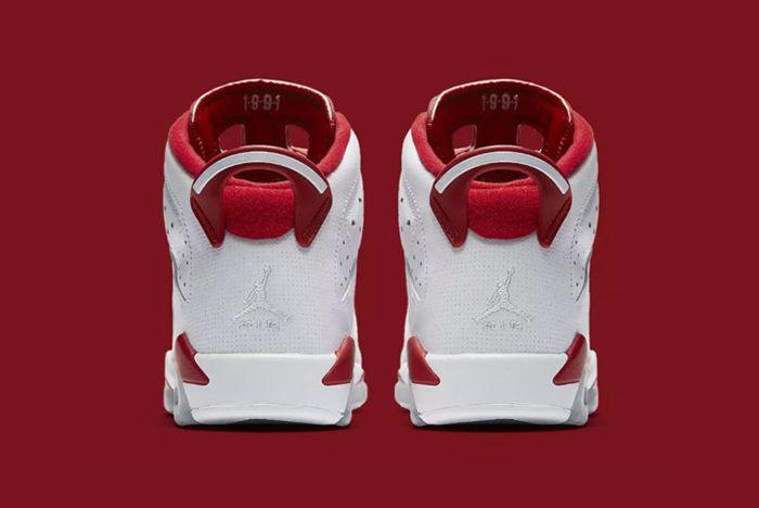 Air Jordan 6 Alternate2