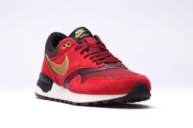 Nike Air Odyssey Gym Red 1
