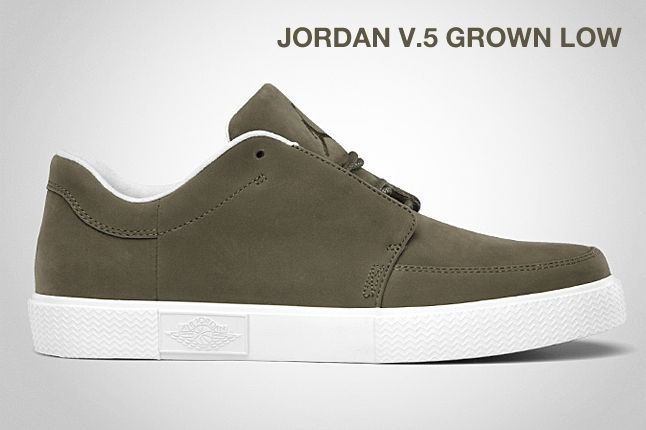 Jordan V 5 Grown Low Iguana 1