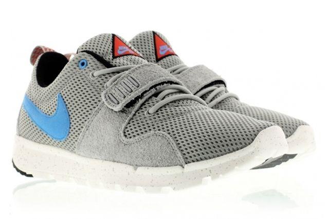 Nike Sb Trainerendor 41