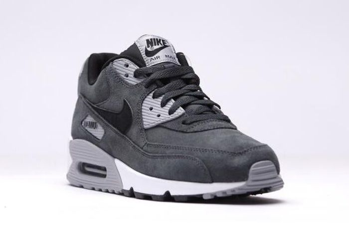 Nike Air Max Anthracite Wolf Grey 3
