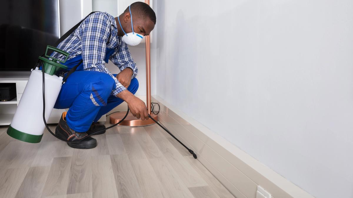 Pest control technician treating under a cabinet