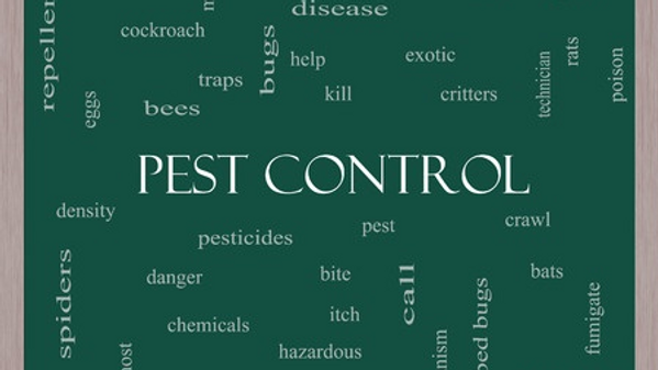 Collage of Pest Control related words