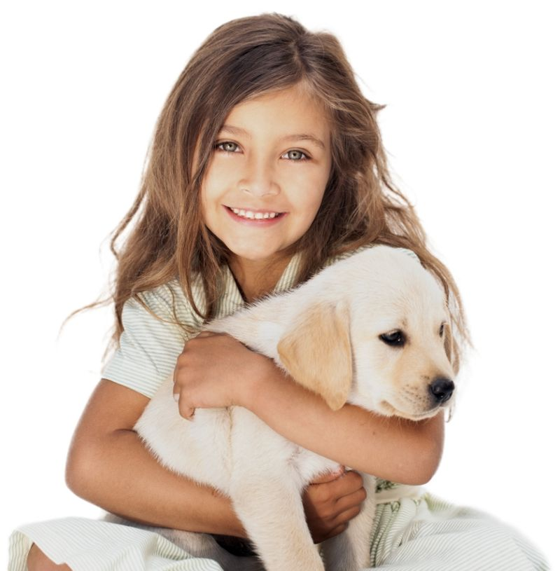 little girl holding puppy