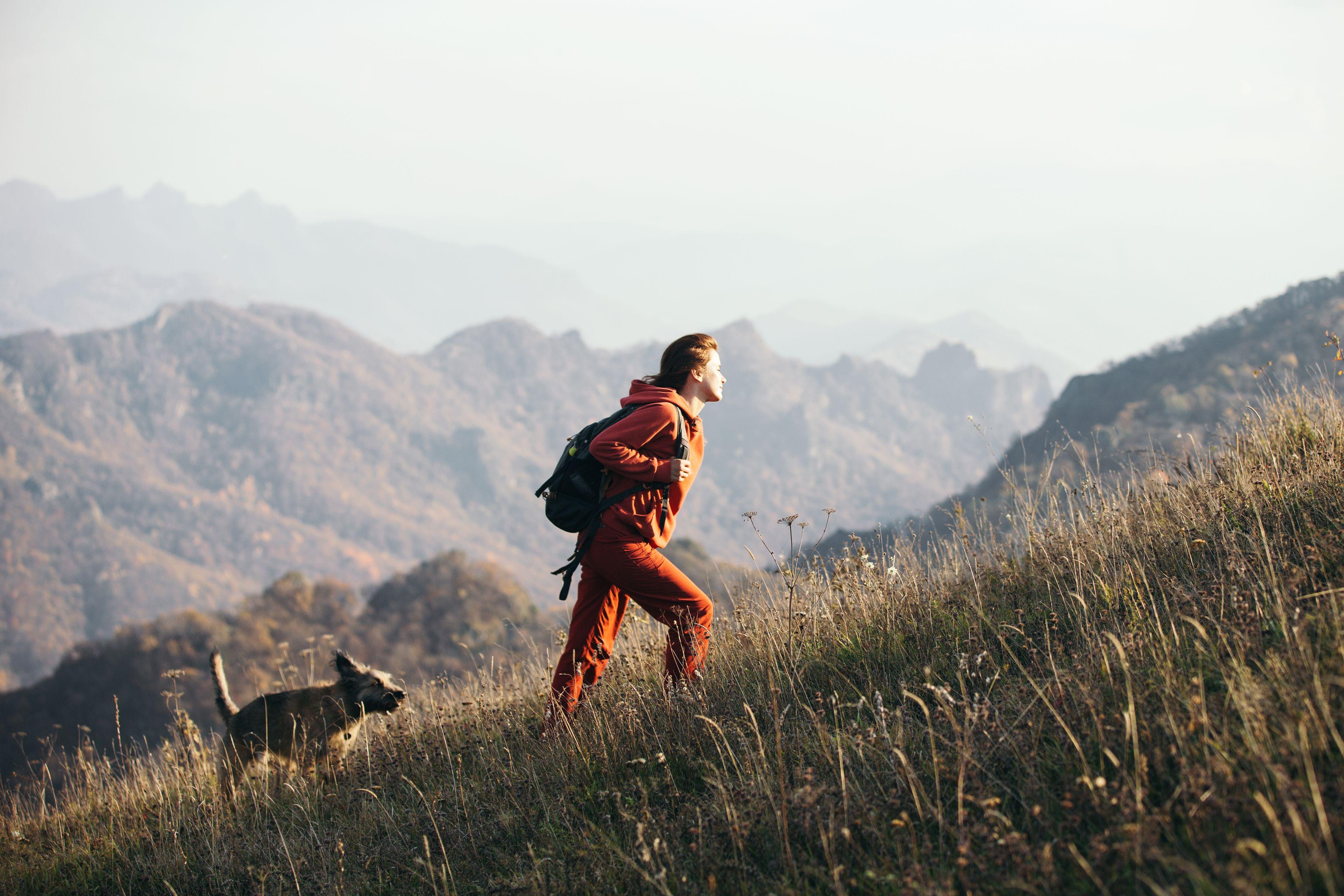 cane a passeggio in natura con la padrona