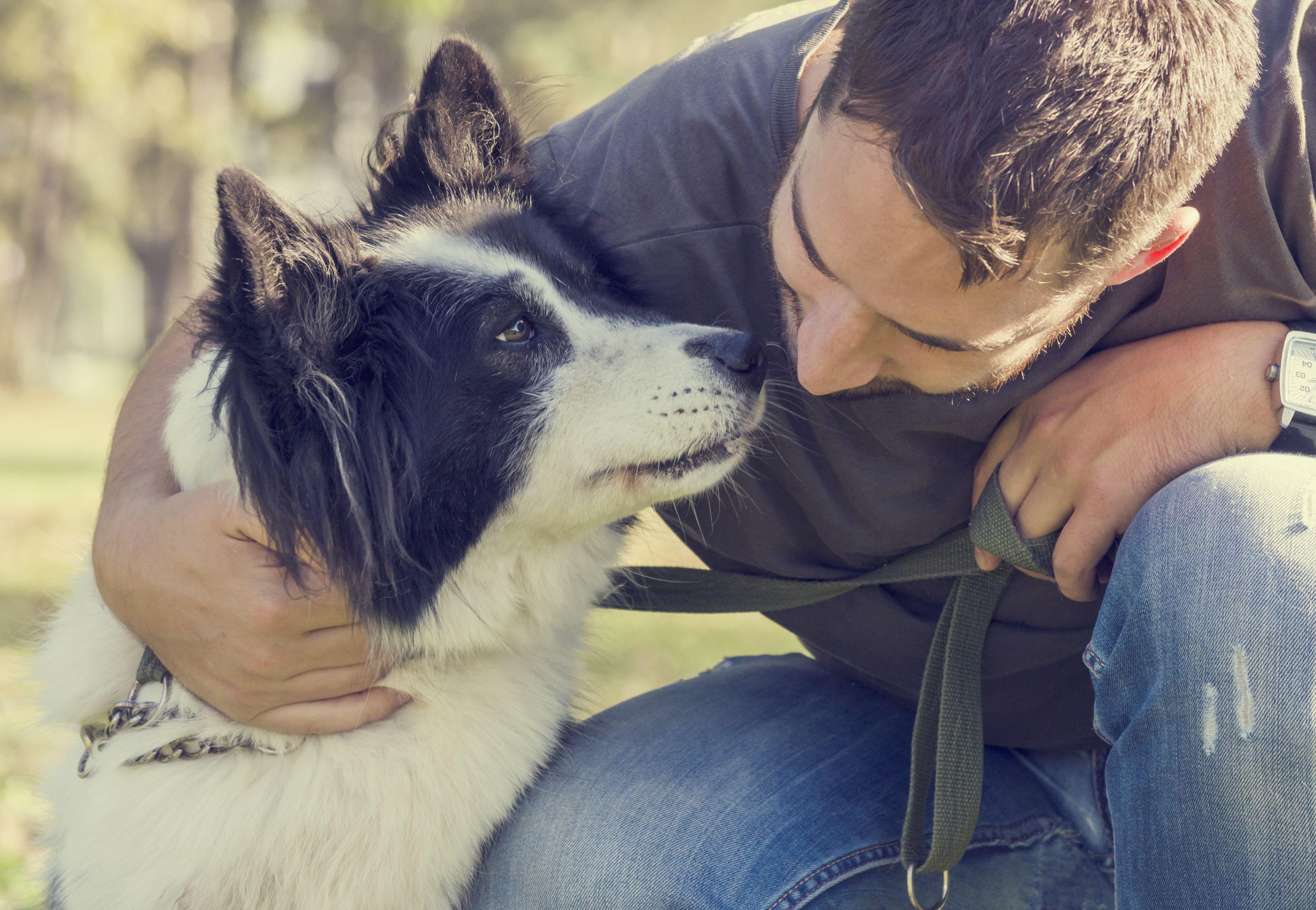 scambio sguardi tra cane e padrone