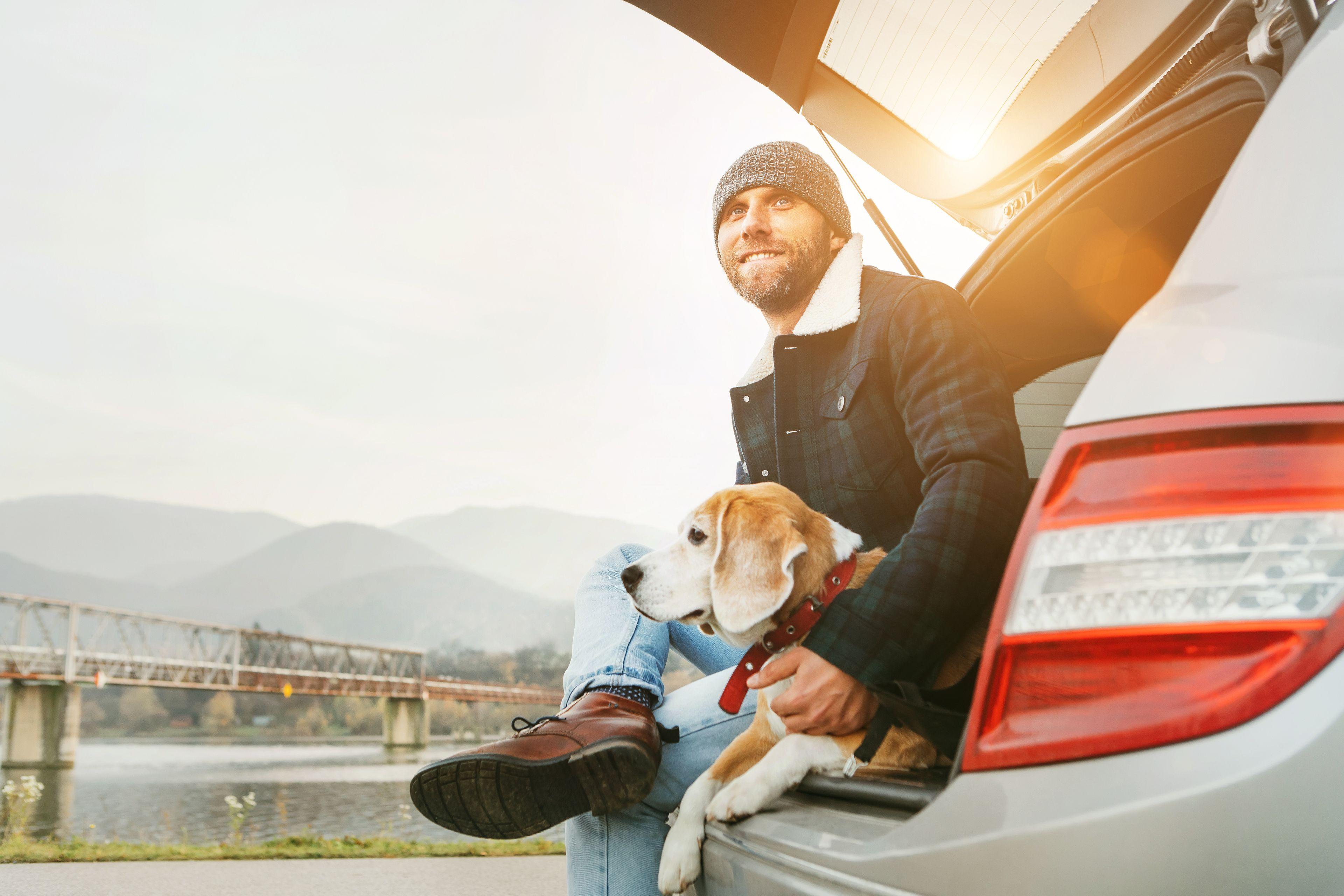 trasportare il cane nel bagagliaio