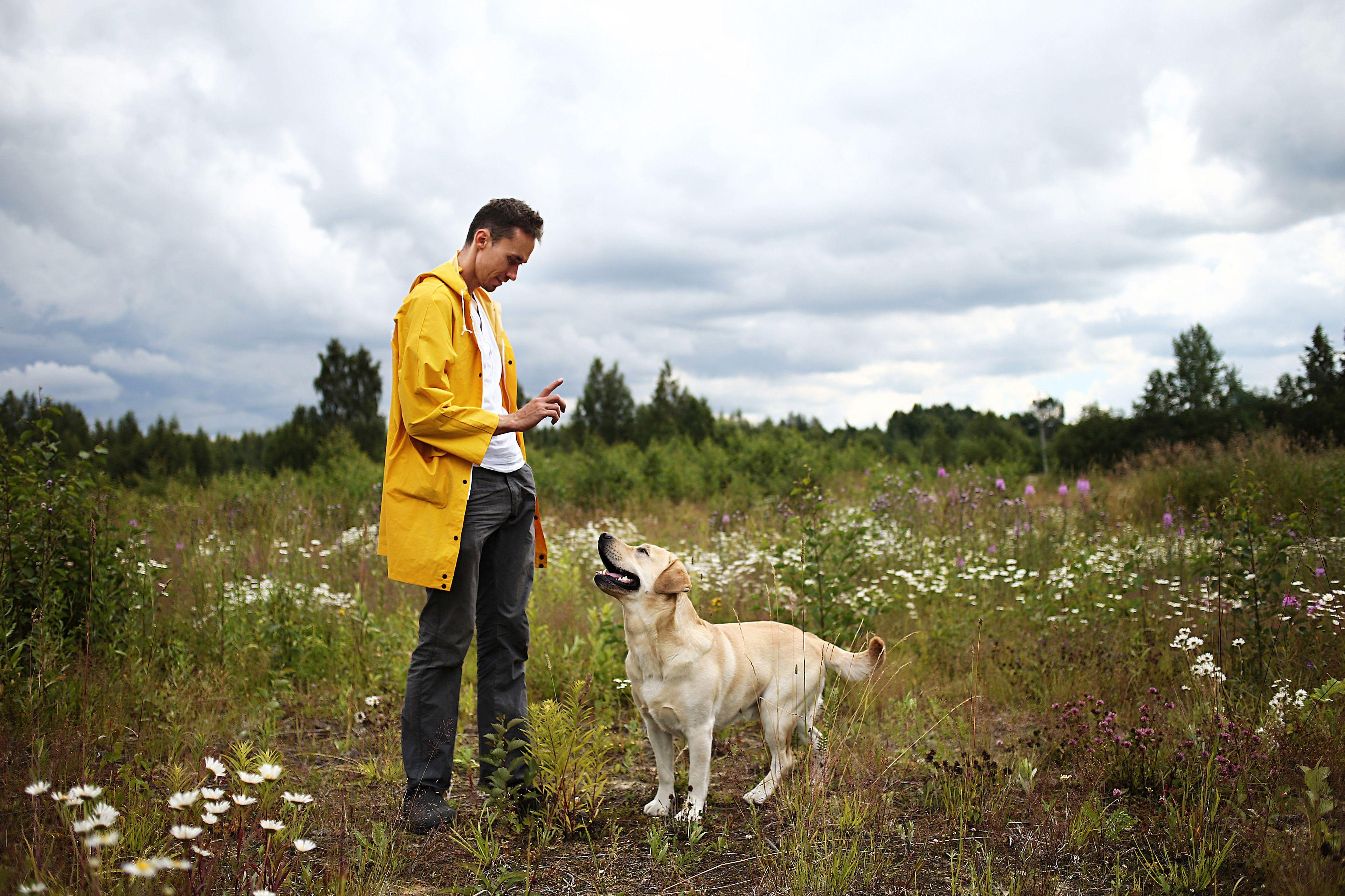 uomo addestra il cane a non allontanarsi