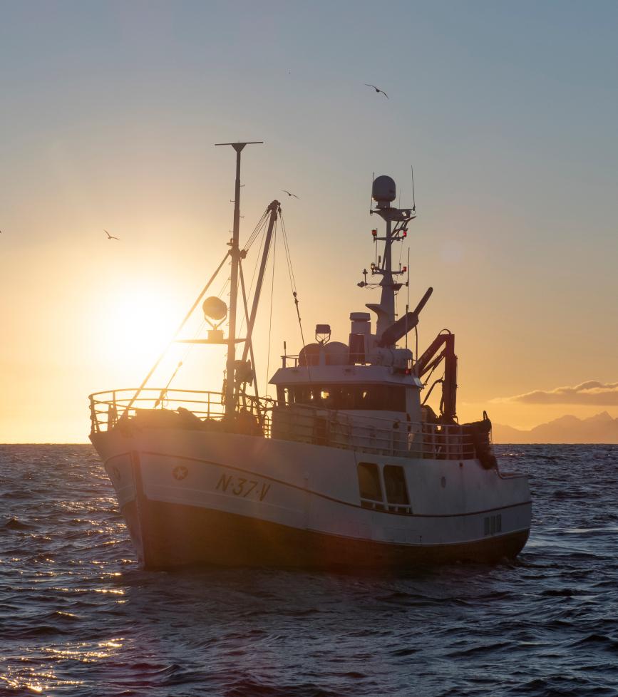 Fiskeskøyte i solnedgang